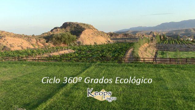 bioagricultura en keops agro, ciudado y salud vegetal, cultivos de productos ecológicos para una alimentación respetuosa con el medio